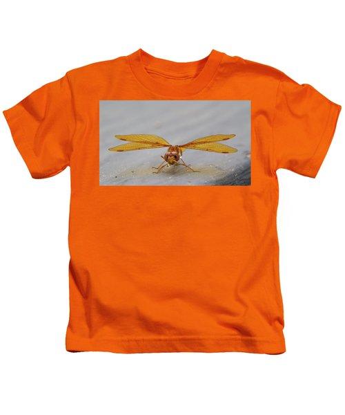 Dragon Fly Hanging Around Kids T-Shirt