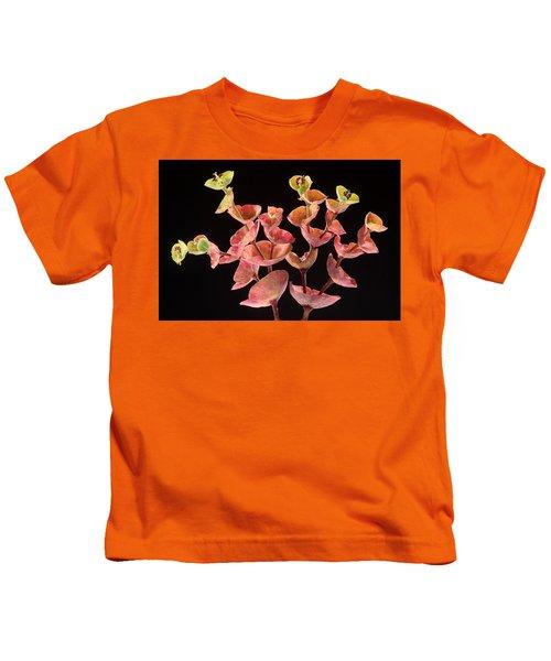 Euphorbia Kids T-Shirt