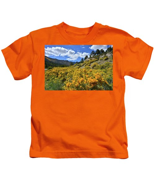 Fall Colors Come To Mt. Charleston Kids T-Shirt