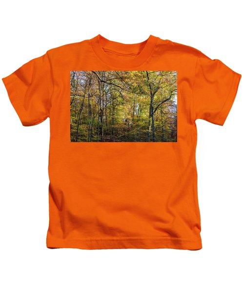 Fall Colors Of Rock Creek Park Kids T-Shirt