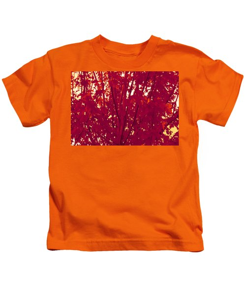 Fall Leaves #2 Kids T-Shirt