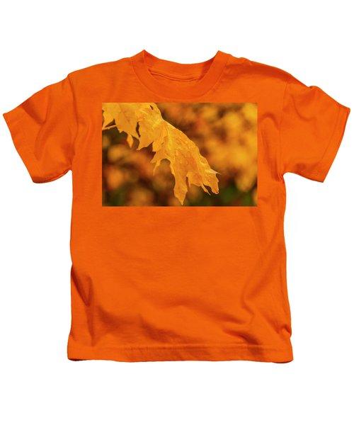 Falls At Central Cascade Kids T-Shirt