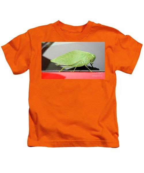 Katydids- Bush Crickets Kids T-Shirt