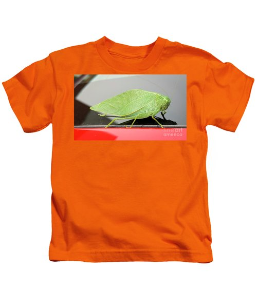 Katydids- Bush Crickets Kids T-Shirt