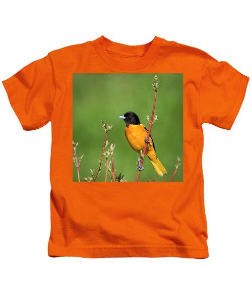 Male Baltimore Oriole Posing Kids T-Shirt