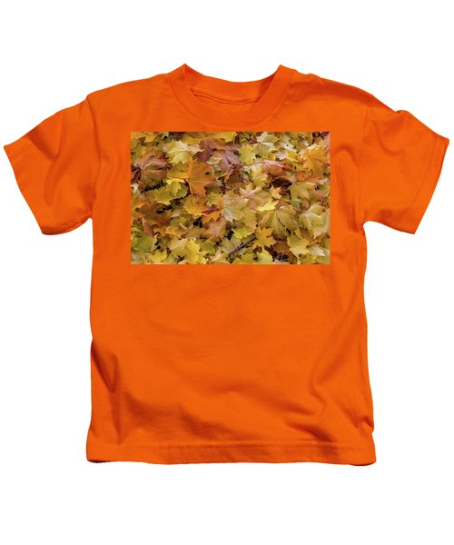 Maple Tree Fall Leaves Background Kids T-Shirt