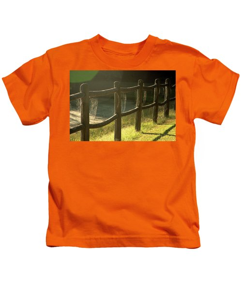 Multiple Spiderwebs On Wooden Fence Kids T-Shirt