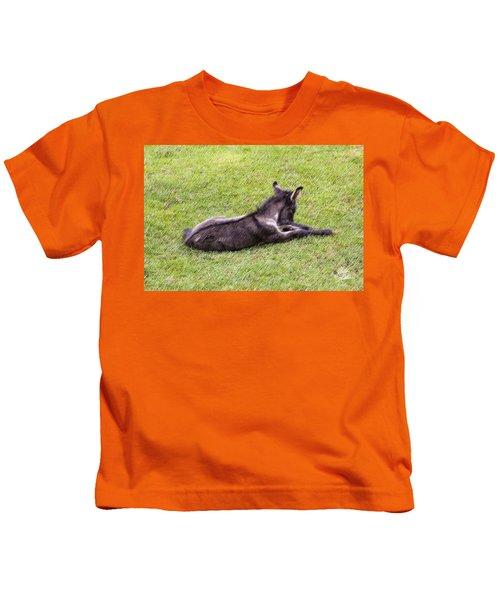 Newborn Colt Kids T-Shirt