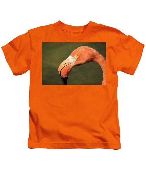Pink Flamingo Kids T-Shirt