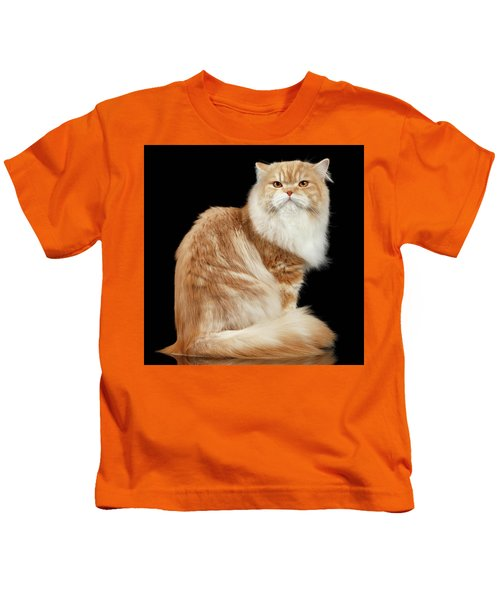 Red Big Adult Persian Cat Angry Sits And Turned Back On Black  Kids T-Shirt