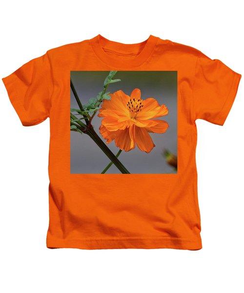 Sulfur Cosmos Kids T-Shirt