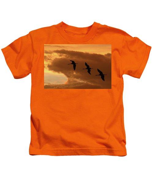 Sunset Flight Kids T-Shirt