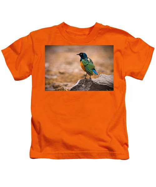 Superb Starling Kids T-Shirt by Adam Romanowicz