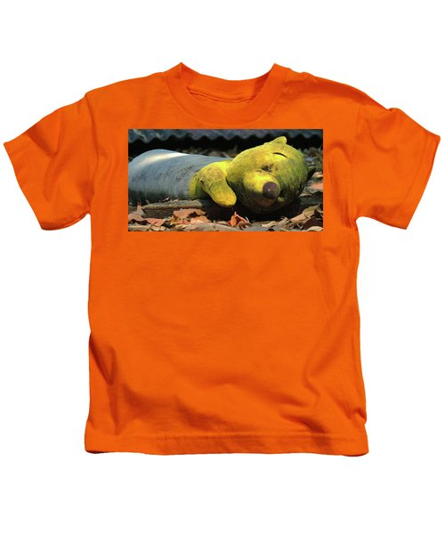 The Lonely Teddy Bear Kids T-Shirt
