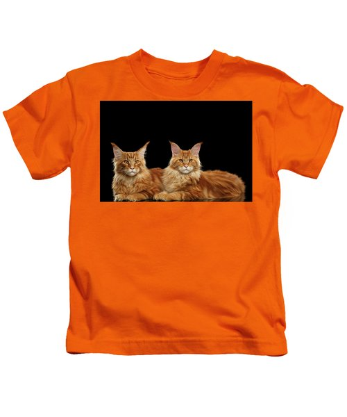 Two Ginger Maine Coon Cat On Black Kids T-Shirt