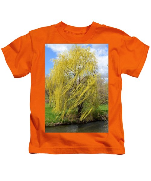 Wind In The Willow Kids T-Shirt
