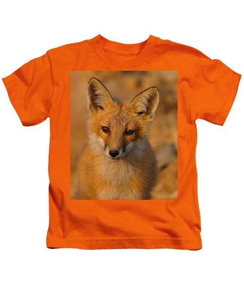 Kids T-Shirt featuring the photograph Young Fox by William Jobes