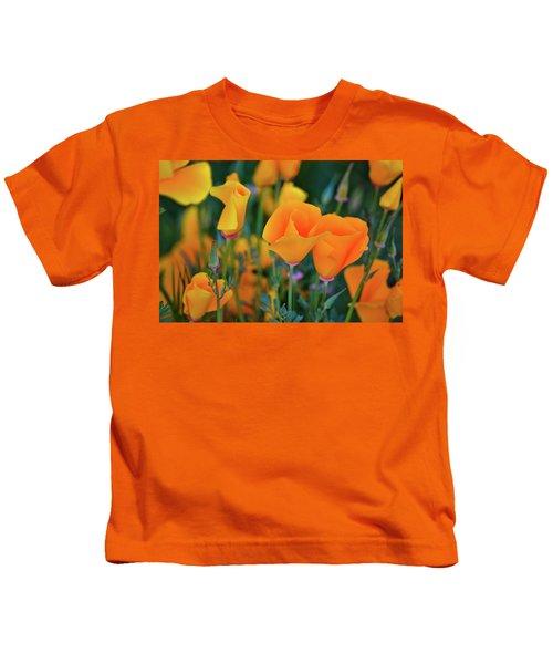 California Poppies Lake Elsinore Kids T-Shirt