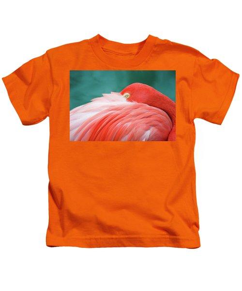Flamingo At Rest Kids T-Shirt