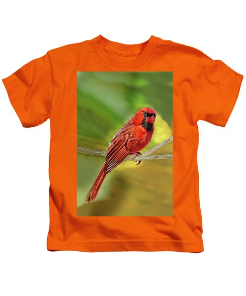 Male Cardinal Headshot  Kids T-Shirt