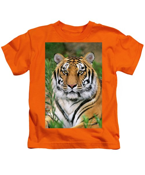 Siberian Tiger Staring Endangered Species Wildlife Rescue Kids T-Shirt