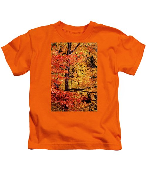 The Colors Of Fall Kids T-Shirt