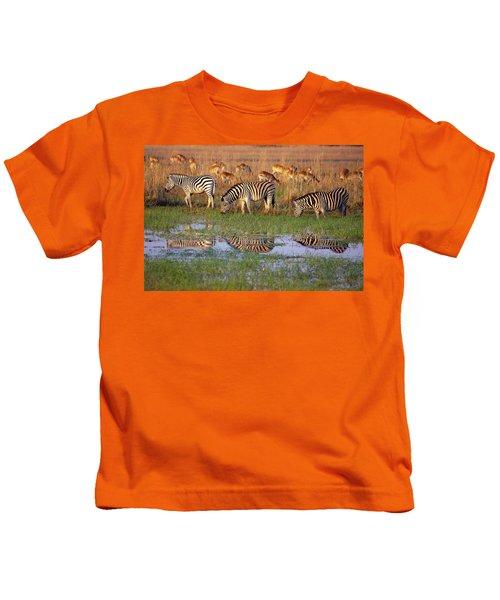 Zebras In Botswana Kids T-Shirt