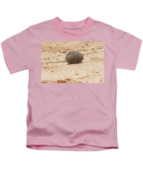 Desert Hedgehog Paraechinus Aethiopicus Kids T-Shirt
