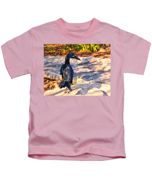 Abyssinian Ground Hornbill Kids T-Shirt by Chris Flees