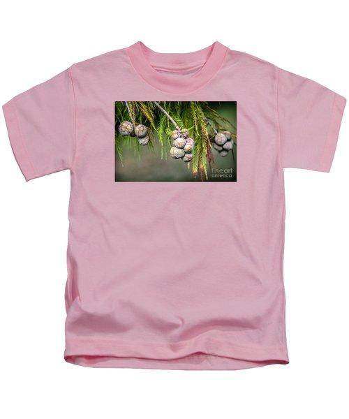 Bald Cypress Tree Seed Pods Kids T-Shirt