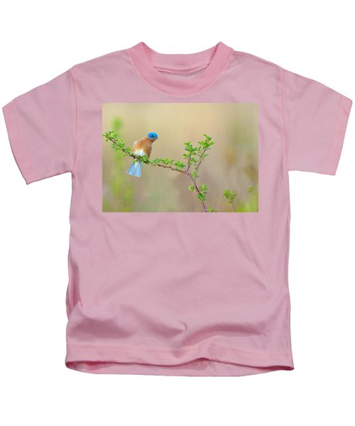 Kids T-Shirt featuring the photograph Bluebird Breeze by William Jobes