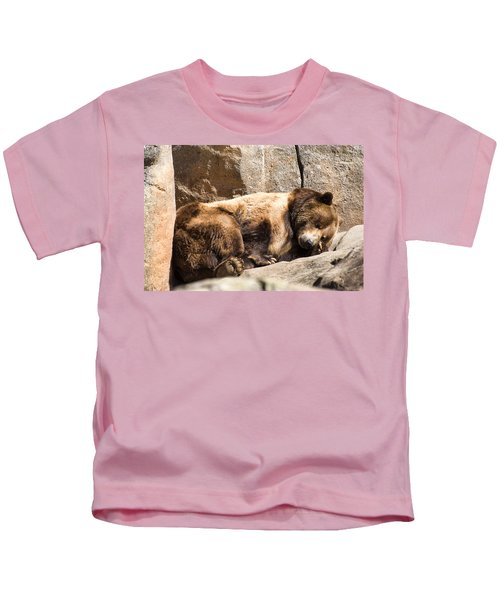 Brown Bear Asleep Again Kids T-Shirt