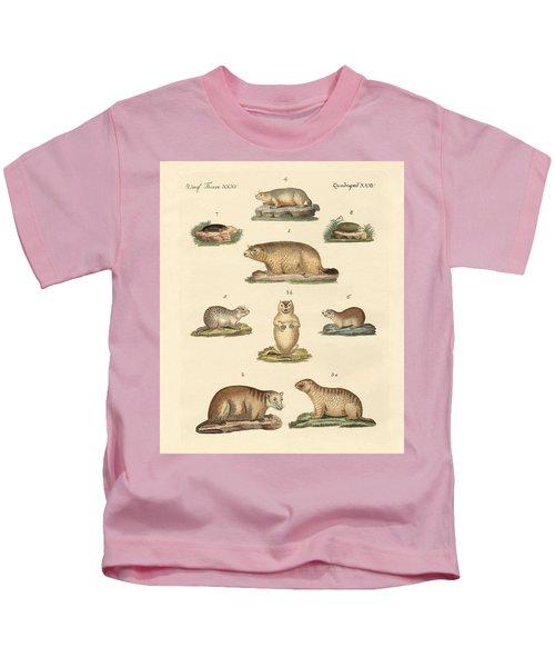 Marmots And Moles Kids T-Shirt by Splendid Art Prints