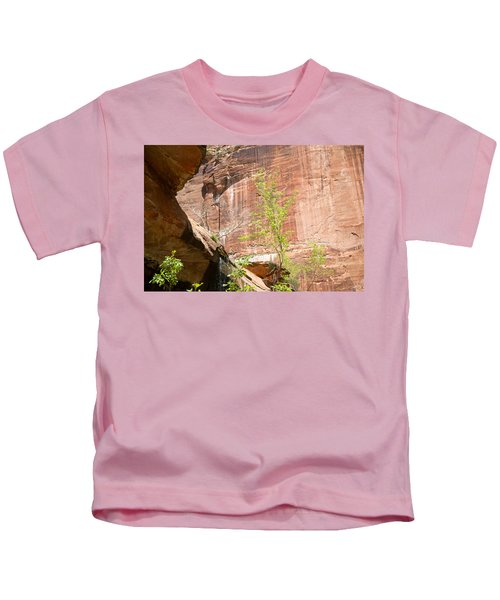 Red Rock With Waterfall Kids T-Shirt