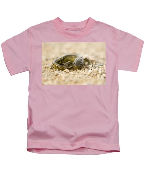 Close Up Tiger Salamander Kids T-Shirt by Mark Duffy