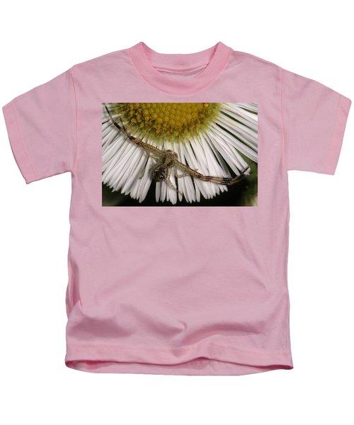 Flower Spider On Fleabane Kids T-Shirt