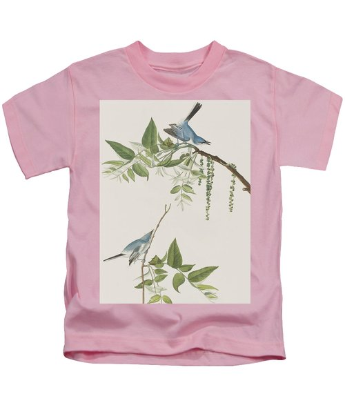 Blue Grey Flycatcher Kids T-Shirt by John James Audubon