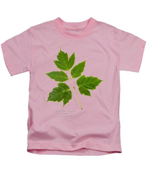 Box Elder Maple Leaf Kids T-Shirt