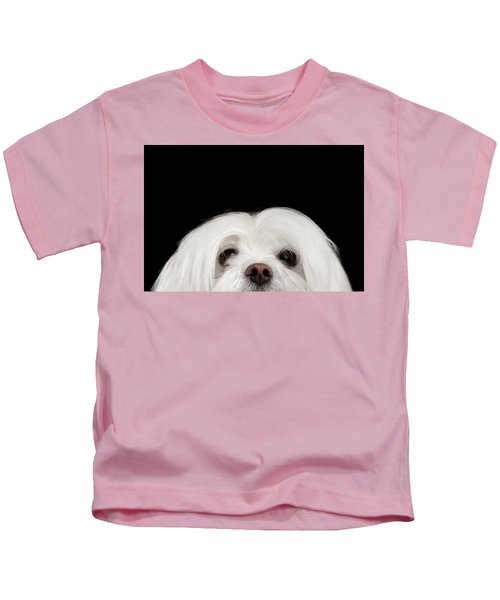 Closeup Nosey White Maltese Dog Looking In Camera Isolated On Black Background Kids T-Shirt