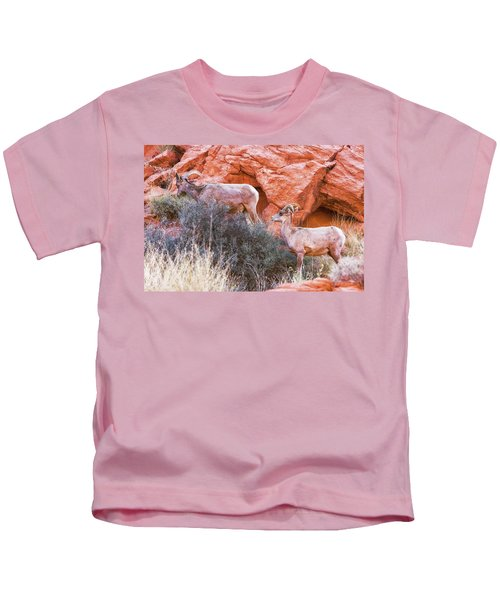 Desert Bighorn Sheep  Kids T-Shirt