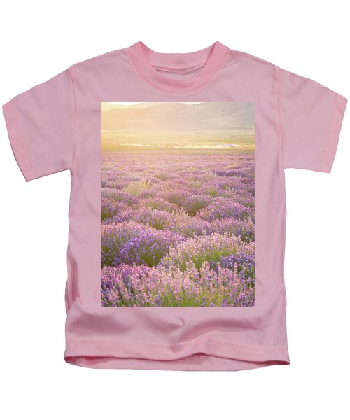 Fields Of Lavender Kids T-Shirt