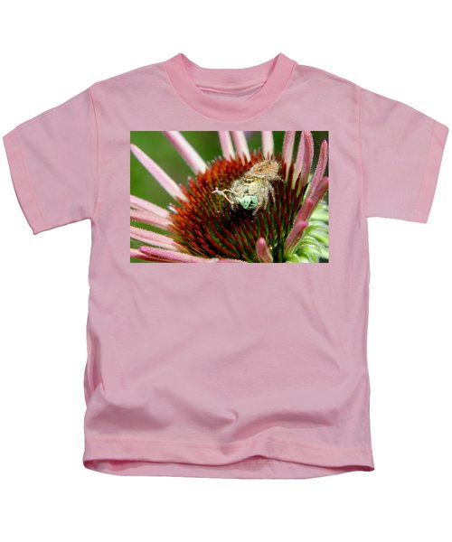 Jumping Spider With Green Weevil Snack Kids T-Shirt