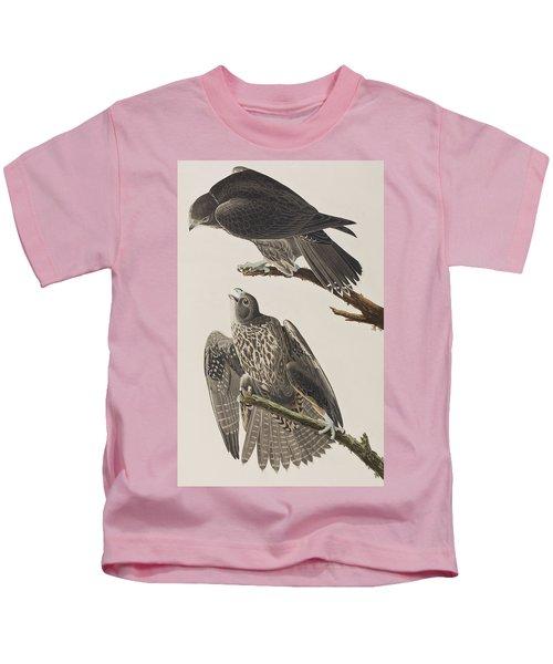 Labrador Falcon Kids T-Shirt by John James Audubon
