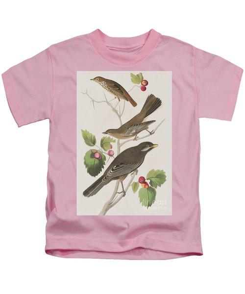 Little Tawny Thrush And Canada Jay Kids T-Shirt