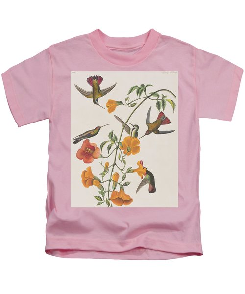 Mango Humming Bird Kids T-Shirt by John James Audubon