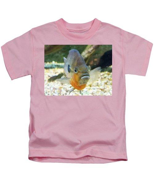 Piranha Behind Glass Kids T-Shirt