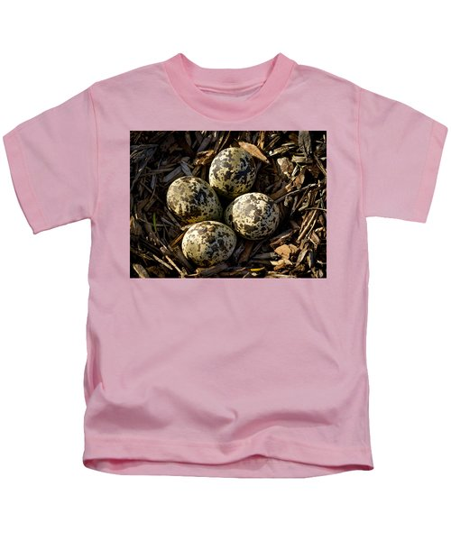 Quartet Of Killdeer Eggs By Jean Noren Kids T-Shirt