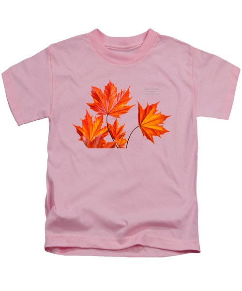 Red Maple Kids T-Shirt by Christina Rollo