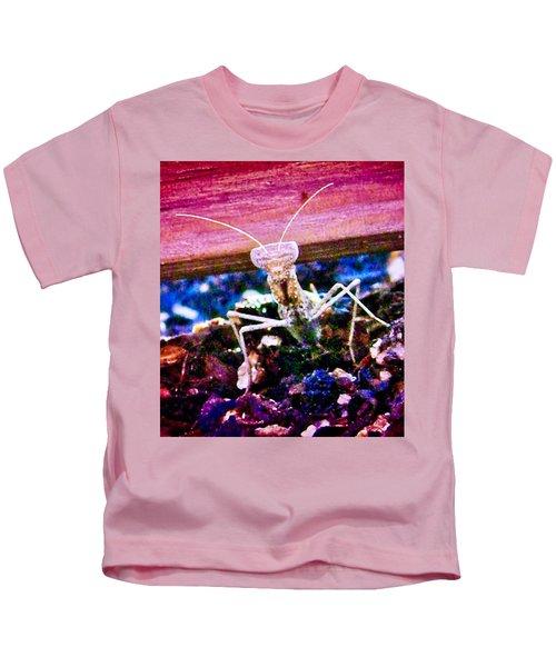 Sonoran Desert Ground Mantis Kids T-Shirt