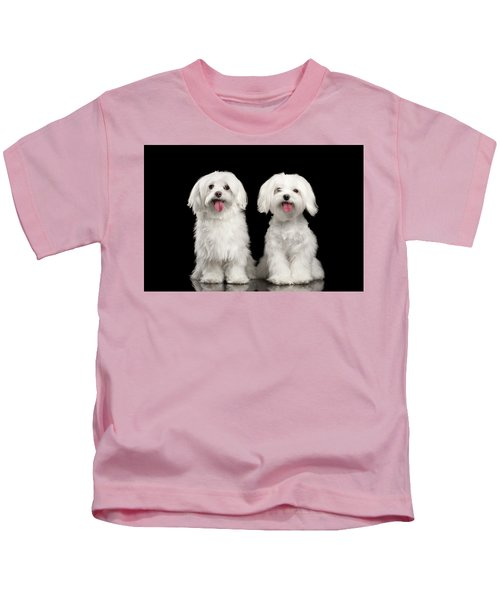 Two Happy White Maltese Dogs Sitting, Looking In Camera Isolated Kids T-Shirt